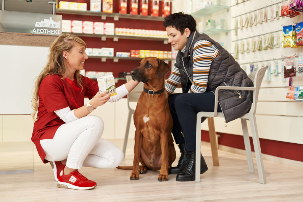 Beratung Kundin mit Hund zur Behandlung von Haustieren